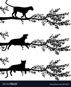 Illustration of Set of three editable vector silhouettes of a leopard on a tree branch with leopards as separate objects vector art, clipart and stock vectors.