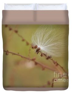 Windblown Milkweed Seed I. Floral and nature inspired printed duvet covers. These soft microfiber duvet covers are hand sewn and include a hidden zipper for easy washing and assembly. Your selected image is printed on the top surface with a soft white surface underneath. All duvet covers are machine washable with cold water and a mild detergent. Fulfillment by Fine Art America. All Images Copyright 2014-2015 Rowena Throckmorton. All Rights Reserved.