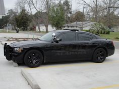 Alapaha PD, GA - Dodge Charger (Ghost graphics)