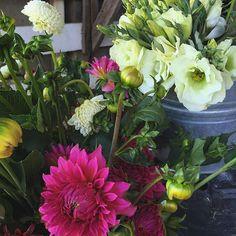 August. #bsidefarm #petaluma #nbflowercollective #sonomawedding #weddingflowers