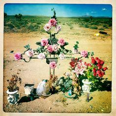roadside shrine  (LynnFriedman, flickr)