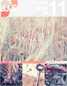 50 Free Photoshop actions for amazing photo effects | The D-Photo