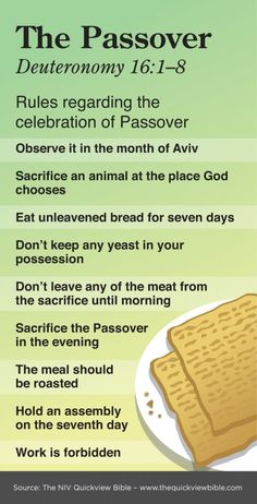 Deuteronomy 16 - Bible illustration - Infographic on The Passover. See more at www.BibleVersesAbout.Org/Bible