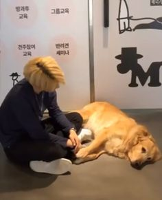 This will forever be the reason why I live. I love Felix and dogs so much. Felix Stray Kids, Funny Kpop Memes, Kid Memes, K Pop, Flipagram Video, Jung Jin Woo, Kpop Gifs, Funny Animals, Cute Animals