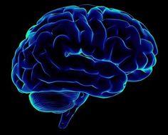 Интересные новости » » Вычислили возраст, когда начинает стареть человеческий мозг