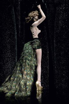 Les albums de Céline E.: Peacock - Opus 2