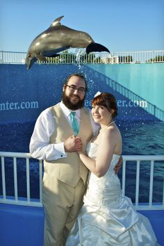 Clearwater Marine Aquarium Wedding, shot by Clearwater videographer Joe with Celebrations of Tampa Bay http://celebrationsoftampabay.com/photographers-clearwater/