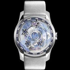 Sea turtle watch