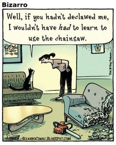declawed cat finds another way....| Bizarro comic