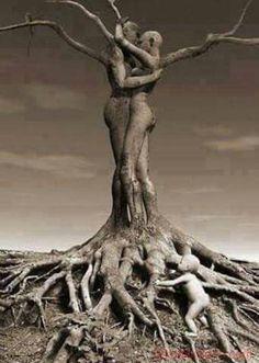 Meraviglioso albero. La vita.