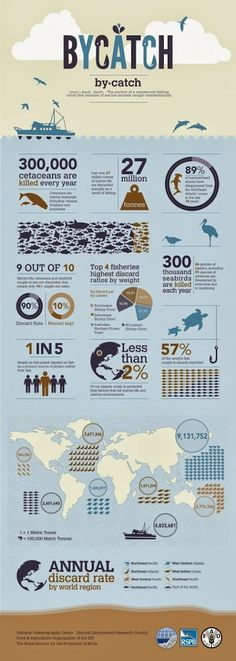 State places the fishing industry #fishing #graphics