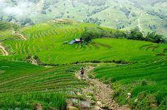 Montañas de Sapa - Vietnam