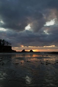Sunset Beach, Coos Bay, Oregon! :D. Terra Says: I'm going to walk this beach once a week.
