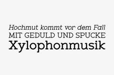 http://www.youworkforthem.com/font/T3533/zolano-serif