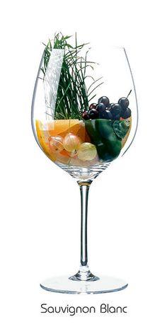 SAUVIGNON BLANC:  Grapefruit, Stachelbeere, Paprika (grün), Johannisbeere (schwarz), Gras