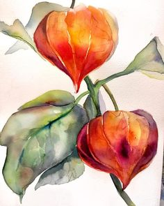 16 Awesome Ideas for DIY Christmas Decorations Art and Craft Watercolor Sunflower, Watercolor Plants, Watercolor Cards, Watercolor Landscape, Watercolour Painting, Floral Watercolor, Watercolors, Watercolor Pictures, Fruit Painting