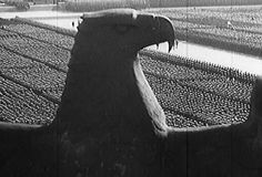 Nazi Reichsadler overlooking mass rally (this with a dragon instead of an eagle) Nuremberg Rally, Nuremberg Trials, Boys In The Boat, Nazi Propaganda, German Soldiers Ww2, Man Of War, War Photography, The Third Reich, Total War