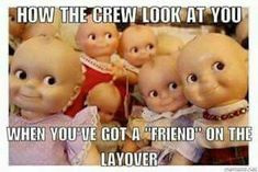 68 Ideas For Funny Friends Quotes Bff Weird Airline Humor, Funny Images, Funny Pictures, Baby Pictures, Cute Quotes For Instagram, Instagram Facts, Instagram Girls, Flight Attendant Humor, Bff