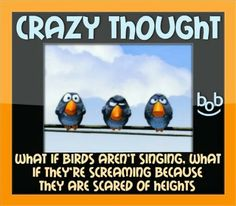 Crazy thought