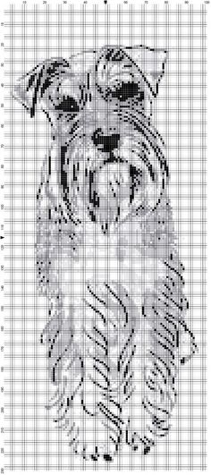 Schnauzer Afghan Crochet Graph Dog Pattern PDF By Alta's Crafts Crochet Square Blanket, Afghan Crochet, Crochet Squares, Cross Stitch Charts, Cross Stitch Patterns, Crochet Patterns, Crochet Ideas, Schnauzer Puppy, Charts And Graphs