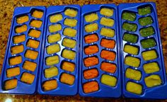 Baby Food Freeze in Ice Cube Trays