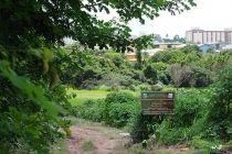 Parque Vivencial do Varjão receberá 40 mil tipos de mudas do Cerrado - http://noticiasembrasilia.com.br/noticias-distrito-federal-cidade-brasilia/2015/12/23/parque-vivencial-do-varjao-recebera-40-mil-tipos-de-mudas-do-cerrado/