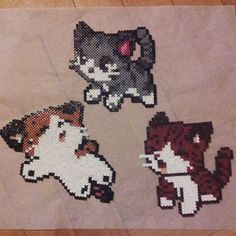 Cats perler beads by _radka_m_