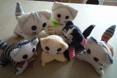 chaton en tricot