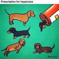 Prescription for Happiness=Dogs. <3                                                                                                                                                     More