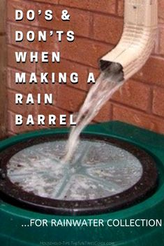 One of the first things people do when homesteading for beginners is look for rain barrel ideas. Here are the do's and don'ts for making your own DIY rain barrel system for urban homesteading. Outdoor Projects, Garden Projects, Water Collection System, Gardening Tips, Vegetable Gardening, Container Gardening, Flower Gardening, Compost Container, Indoor Gardening