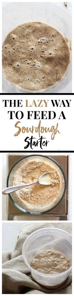 The easy way to feed a sourdough starter! The easy way to feed a sourdough starter! Sourdough Bread Starter, Sourdough Recipes, Bread Recipes, Baking Recipes, Yeast Starter, Ma Baker, Beaux Desserts, Muffins, Fermented Foods