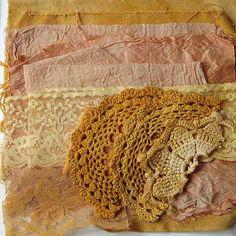 Solar dyeing with Montbretia -Carolyn Saxby