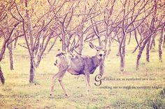 Deer Wildlife Custom Inspirational Scripture by KnowGodThroughArt, $28.00