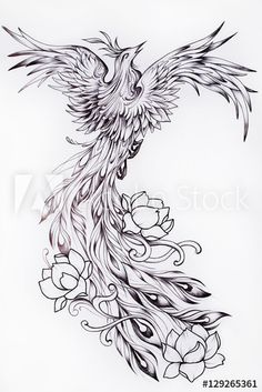 Black And White Sketch Of A Beautiful Phoenix With Flowers. Stock Illustration - Illustration of inspiration, drawing: 81881355 Phoenix Tattoo Feminine, Phoenix Back Tattoo, Phoenix Bird Tattoos, Phoenix Tattoo Design, Phoenix Art, Phoenix Tattoo Sleeve, Feminine Back Tattoos, Rising Phoenix Tattoo, Phoenix Design