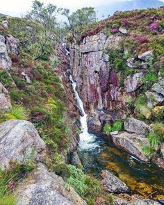 Sweet Spot on the Isle of Arran, Scotland.