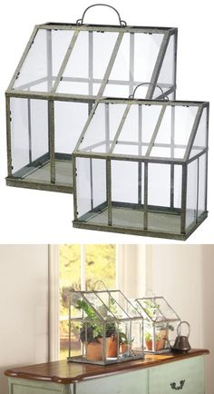 """SHOP :: Vera Greenhouse - Set of 2, $89 + 7 shipping 