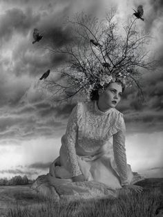The Tree by Jayne Alexander