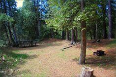 #Sandbanks Provincial Park Ontario Canada Ontario Parks, Canada, Plants, Image, Plant, Planets