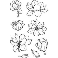 Jane's Doodles Magnolia stamps are lovely! #magnolia #flowers