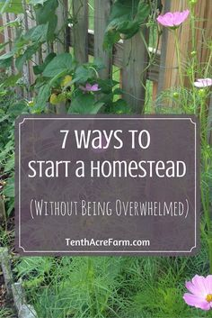 Many people want to start homesteading or gardening but don't know how to start or how to fit it into their schedule. After all, regular everyday life is busy enough. These resources will help guide you through the process of getting started, busting through doubt and discomfort, and achieving your dreams.