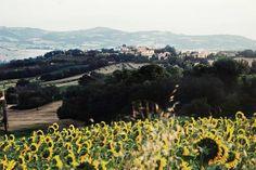 Sant'Ippolito, Marche