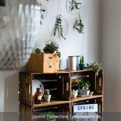 Regal aus Obstkisten im Esszimmer. Das Regal stammt von Villka Hillka. Wenn hier nicht gerade Pflanzen dekoriert sind, stehen dort vorrangig meine Kochbücher.
