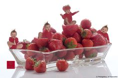 Photoglobus - 175 Years of Photo Moments Raspberry, Strawberry, In This Moment, Fruit, Food, Earth, Berries, Essen, Strawberry Fruit