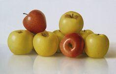"""Apples""; Omar Ortiz artist"