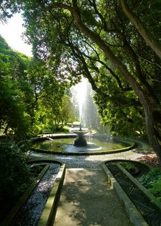 The fountain and Neptune Cascade, and a bit of dappled sunlight, in Holker Hall's gardens.