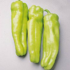 """Sweet Non-Bells Pepper Cubanelle- Sweet Italian frying type delicious taste thick skinned 5"""" long to 2"""" wide. These fruit turn from light-yellow to bright red when ripen. This pepper is very mild little heat. Use this variety on pizza, stir-fry, pickling, salads, and Italian dishes."""