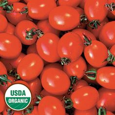 Italian tomato that is well suited for drying; fruits retain superb color and flavor when dehydrated. Bushy plants need support due to the heavy yields of 1-2 ounce plum-shaped red fruits. Determinate, 70-75 days from transplant.