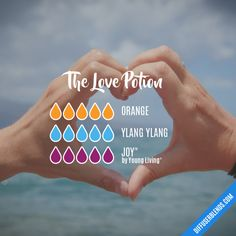 The Love Potion - Essential Oil Diffuser Blend