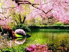 Весняний подих вітру)))