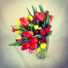 Gorgeous #tulips arrived at the shop today! #springflowers